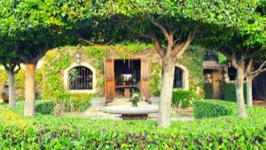 Morrells Garden