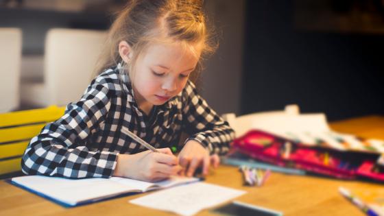 Tips to educate, homeschool mom