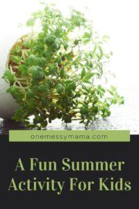 A Fun Summer Activity For Kids